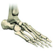 All About Total Ankle Replacement in New Jersey.