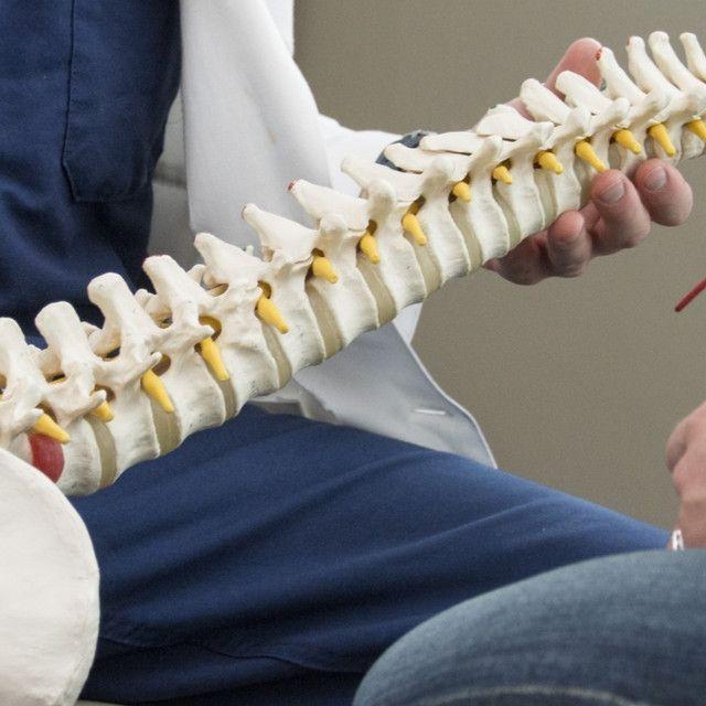 Joseph K  Lee, M D  | Rothman Orthopaedic Institute