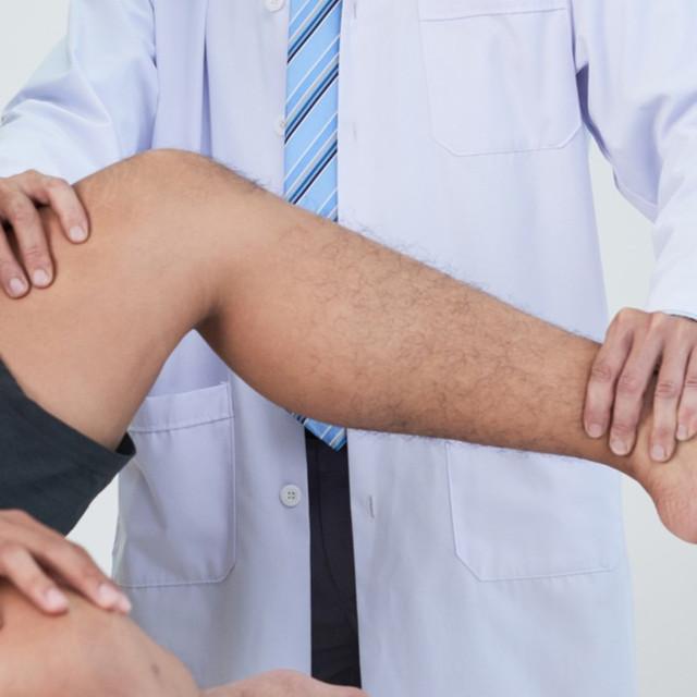 Knee | Rothman Orthopaedic Institute